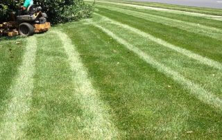 Landscaper Indian Trail NC