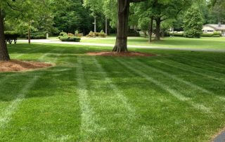 indian trail lawn care services