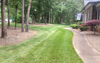 indian trail nc lawn care