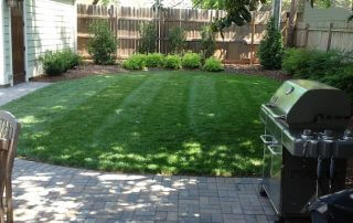 indian trail nc lawn care services