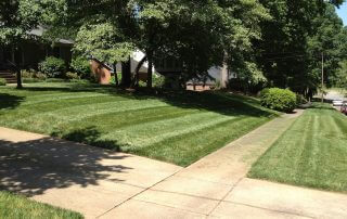 lawn care services indian trail