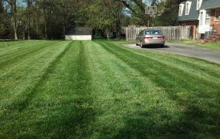 lawn care services marvin nc