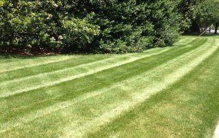 lawn care services matthews