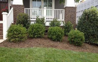 lawn care services south charlotte