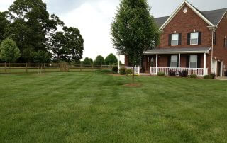 lawn care services weddington