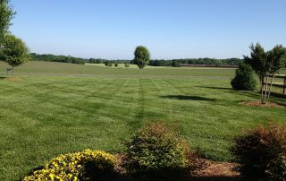 lawn care services weddington nc