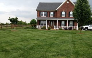 lawn care weddington nc