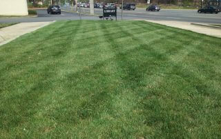 lawncare service