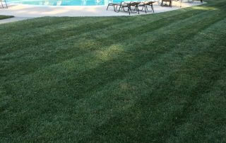 marvin nc lawn care