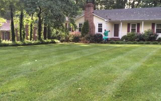 marvin nc lawn care services