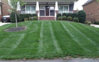 midland lawn care