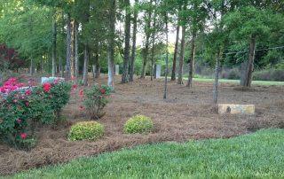 midland nc landscaping