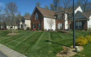 midland nc lawn care services