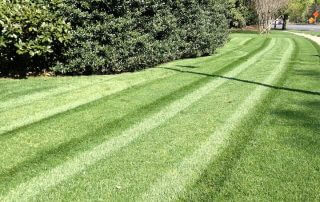 waxhaw lawn care services