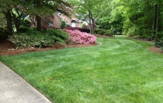 weddington lawn care