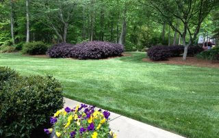 weddington lawn care services